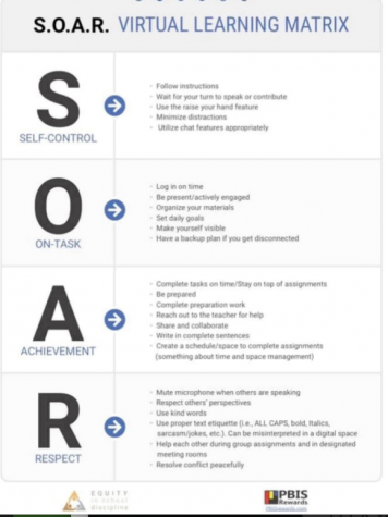 SOAR: Creating a Positive Virtual Experience